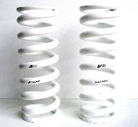 E82 TCKR VVS Alloy Rear Springs